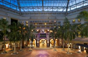 Gaylord Palms Resort & Convention Center (8 of 38)