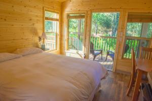 Tiny House Cabin 5
