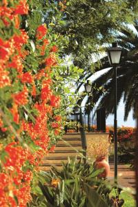 Quinta da Bela Vista (19 of 60)