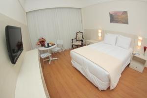Premier Parc Hotel, Hotely  Juiz de Fora - big - 55