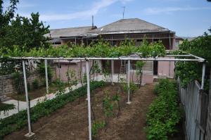Nukri Guest House, Penzióny  Gori - big - 23
