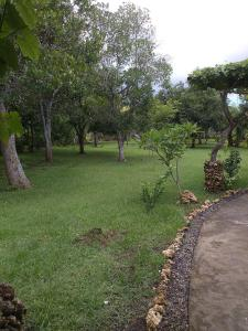Medori Putih Homestay, Priváty  Uluwatu - big - 69