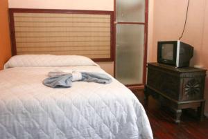 Hotel Posada del Sol, Hotels  San José - big - 11