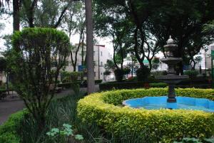 HomFor Napoles, Apartmány  Mexiko City - big - 8