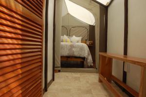 Rhincodon Typus, Hotels  Holbox Island - big - 13