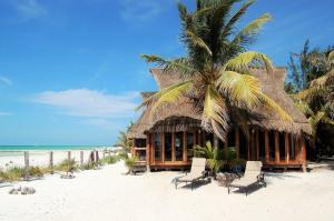Rhincodon Typus, Hotels  Holbox Island - big - 11