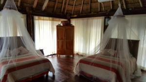 Rhincodon Typus, Hotels  Holbox Island - big - 10