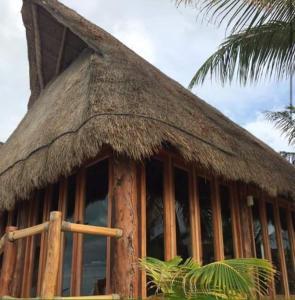 Rhincodon Typus, Hotels  Holbox Island - big - 49