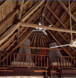 Rhincodon Typus, Hotels  Holbox Island - big - 7