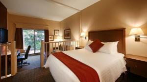 Queen Suite with Atrium View and Spa Bath