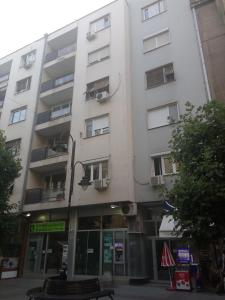 Regina's Central Street Apartment, Apartmány  Skopje - big - 7