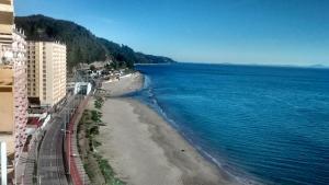 Departamentos Playa Bellavista tome, Apartmanok  Tomé - big - 17