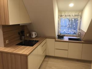 Apartments Satva, Апартаменты  Вильнюс - big - 13