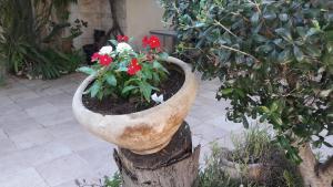 Holiday Home Raz, Appartamenti  Kefar Sava - big - 26
