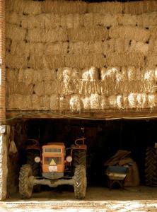 Casa Rural Cal Rei, Vidiecke domy  Lles - big - 69