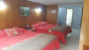 Windsor Suites Hotel, Hotely  Santiago - big - 6