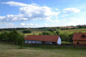 Country house - Slapy/Pazderny, Ferienhöfe  Žďár - big - 59