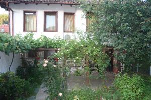 Todorova House