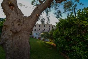 Hotel Miramonti, Szállodák  Selva di Fasano - big - 26
