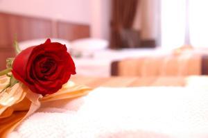 Beyaz Kugu Hotel, Отели  Стамбул - big - 47