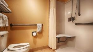 King Room with Walk-In Shower - Disability Access/Non-Smoking