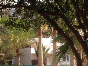 Ktima Grammeno Beachside Villa, Ville  Kountoura Selino - big - 29