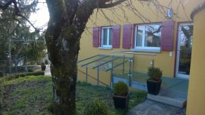 Swiss Borzoi House, Panziók  Bellerive - big - 16