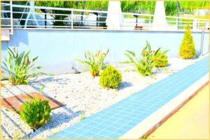 Tramonto D Oro, Appartamenti  Agropoli - big - 19