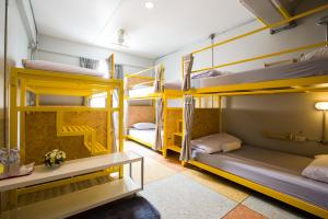 Family Room with Shared Bathroom (6 Bunk Beds)