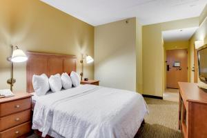 Double Room - Disability Access/Hearing Disabled Accessible