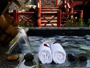 Tianjin Country Garden Phoenix Hotel, Hotel  Tianjin - big - 31