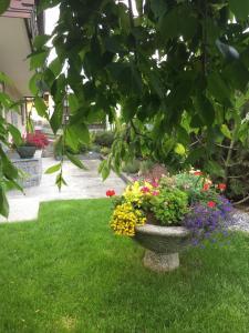 Casa Bracchi, Апартаменты  Вальдизотто - big - 61