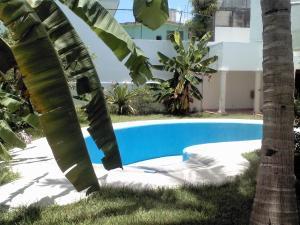 Suites Rosas, Apartmány  Kankún - big - 20