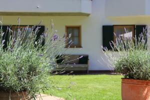 Villa Ortensia, Aparthotels  San Vigilio Di Marebbe - big - 43