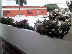Suites Rosas, Ferienwohnungen  Cancún - big - 6