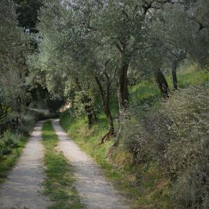 Bio Due Di Moro, Hétvégi házak  Gardone Riviera - big - 42