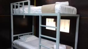 ドミトリールーム 男性用 ベッド計6台のシングルベッド1台