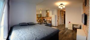 European style VIP flat, Appartamenti  Kiev - big - 23