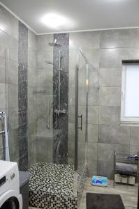 European style VIP flat, Appartamenti  Kiev - big - 28