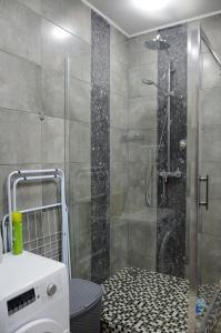 European style VIP flat, Appartamenti  Kiev - big - 29