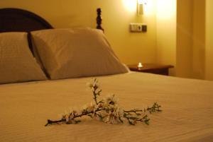 Hotel Encina Centenaria