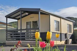 Apollo Bay Holiday Park