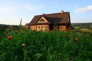 Dom Goscinny Szpilkowo