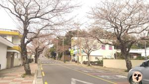 We & Me, Prázdninové domy  Seogwipo - big - 40
