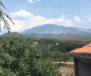 Belvedere tra Etna e Mare - AbcAlberghi.com
