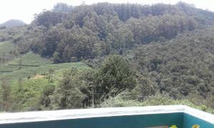 Cool Mount Guest, Alloggi in famiglia  Nuwara Eliya - big - 35