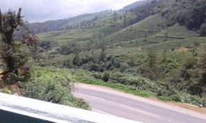 Cool Mount Guest, Alloggi in famiglia  Nuwara Eliya - big - 36
