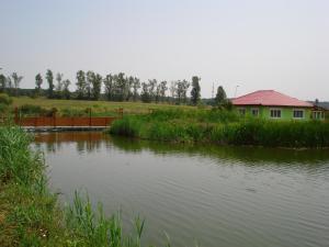 Casa Verde, Dovolenkové domy  Căldăruşani - big - 22