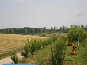 Casa Verde, Dovolenkové domy  Căldăruşani - big - 17