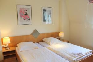 Hotel Schiller, Hotely  Freiburg im Breisgau - big - 21
